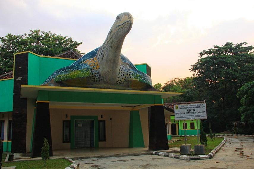 Konservasi Penyu Pangumbahan menjadi salah satu area yang bisa dikunjungi di sekitar Pantai Pangumbahan