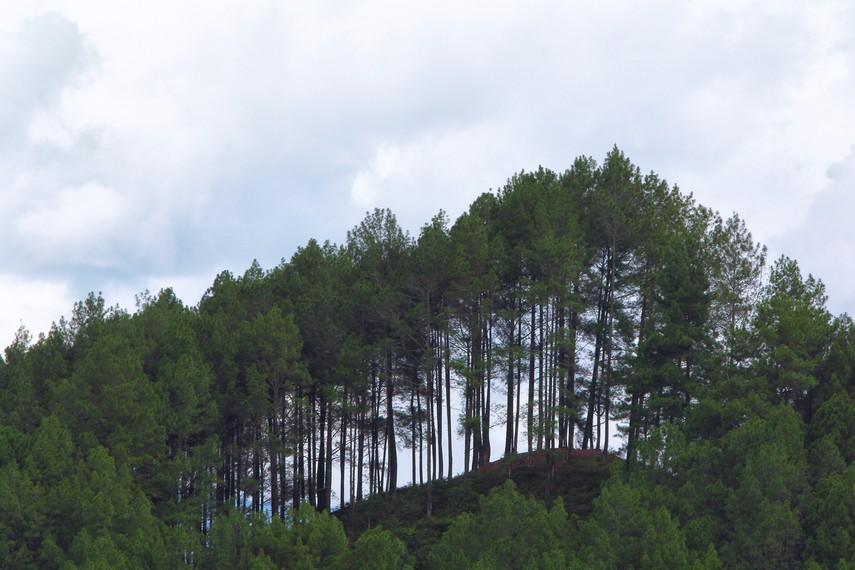 Posisinya berada di ketinggian 650 mdpl membuatnya memiliki rentang pandangan yang cukup luas
