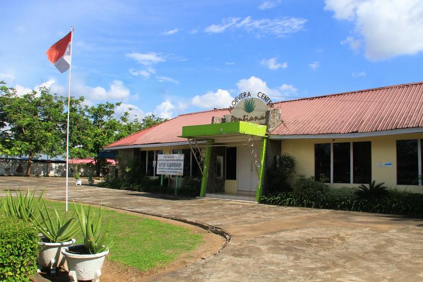 Pontianak memiliki satu tempat yang menjadi pusat budidaya lidah buaya yakni Unit Pelaksana Teknis Dinas (UPTD) Agribisnis