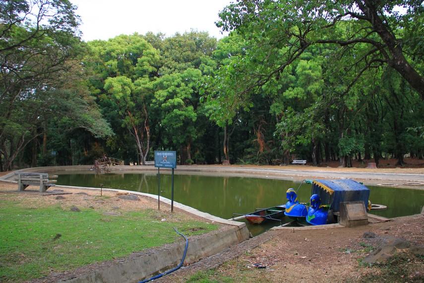 Kebun Raya Purwodadi memiliki luas sekitar 85 hektar yang telah dibagi menjadi beberapa kawasan yang didominasi kawasan konservasi