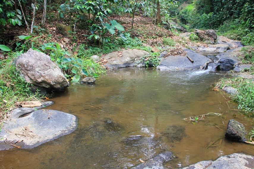 Lokasinya yang berada di tengah hutan dan tertutup pemukiman warga menjadikan Curug Sumber Nyonya belum banyak dijamah oleh wisatawan