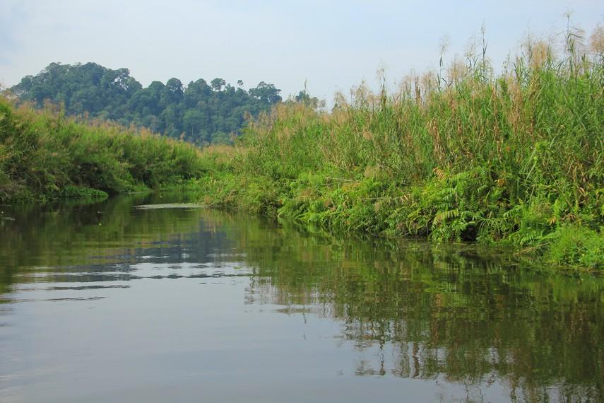 Luasnya yang mencapai 2000 hektar dan panjang yang mencapai sekitar 10 km menjadikan cagar alam ini menjadi salah satu destinasi menarik untuk dikunjungi
