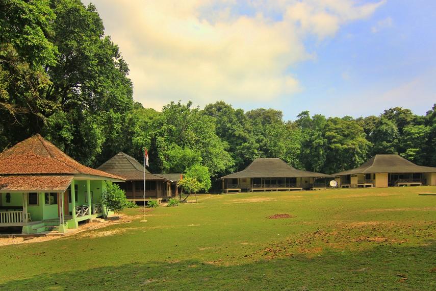 Pulau Peucang memiliki lahan seluas 450 hektar yang terbagi dalam hutan dan wilayah pantai