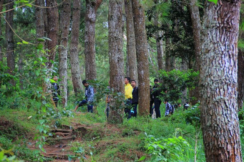 Letaknya yang berada di ketinggian 1.100 mdpl membuat Wisata Alam Palutungan sering dikunjungi wisatawan