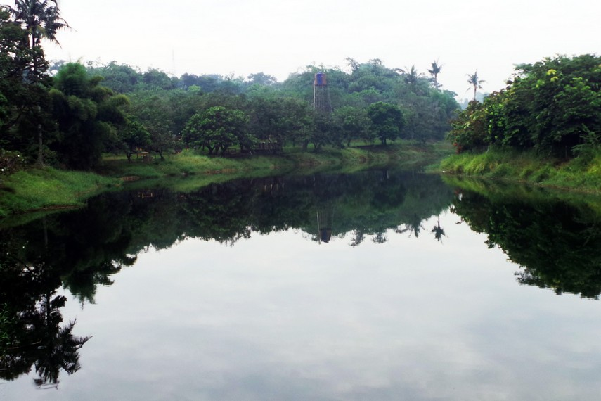 Sekitar area taman ini juga terdapat danau yang biasanya dijadikan area untuk memancing