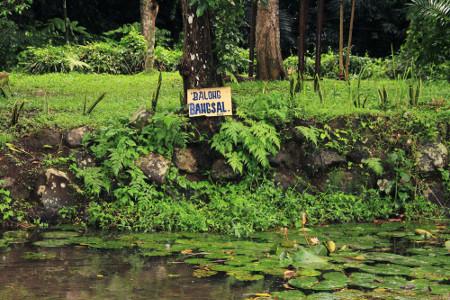 Di Balong Keramat Darmaloka terdapat 5 kolam yang salah satu diantaranya diberi nama Balong Bangsal