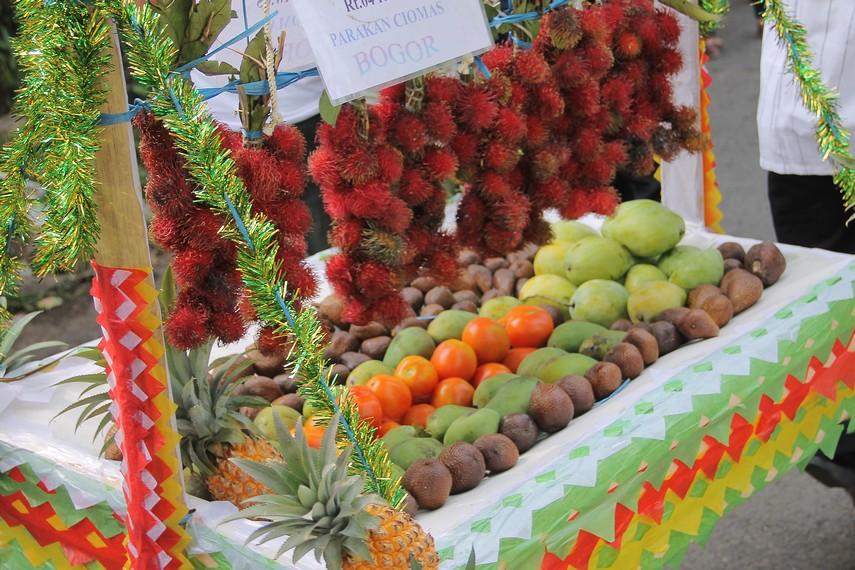 Buah-buahan yang diambil dari kebun menjadi isi dongdang dalam tradisi helaran dongdang