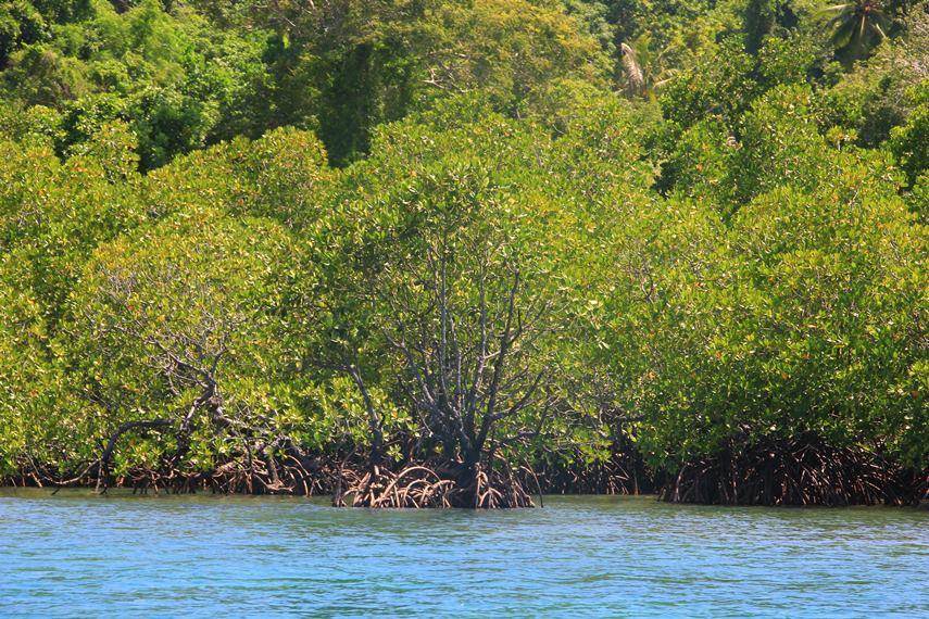 Untuk menuju pulau ini dari Desa Tumbak, perjalanan dilanjutkan dengan menggunakan perahu, jasa sewa perahu banyak dijumpai di dermaga Desa Tumbak