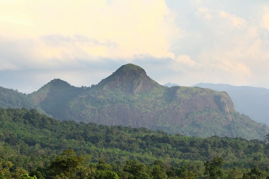 Bukit Jempol memiliki tinggi sekitar 900 meter di atas permukaan laut