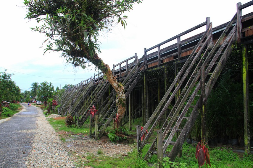 Rumah ini memiliki tangga yang terbuat dari batang kayu besar dan diberikan lekuk untuk memudahkan kaki melangkah naik keatas
