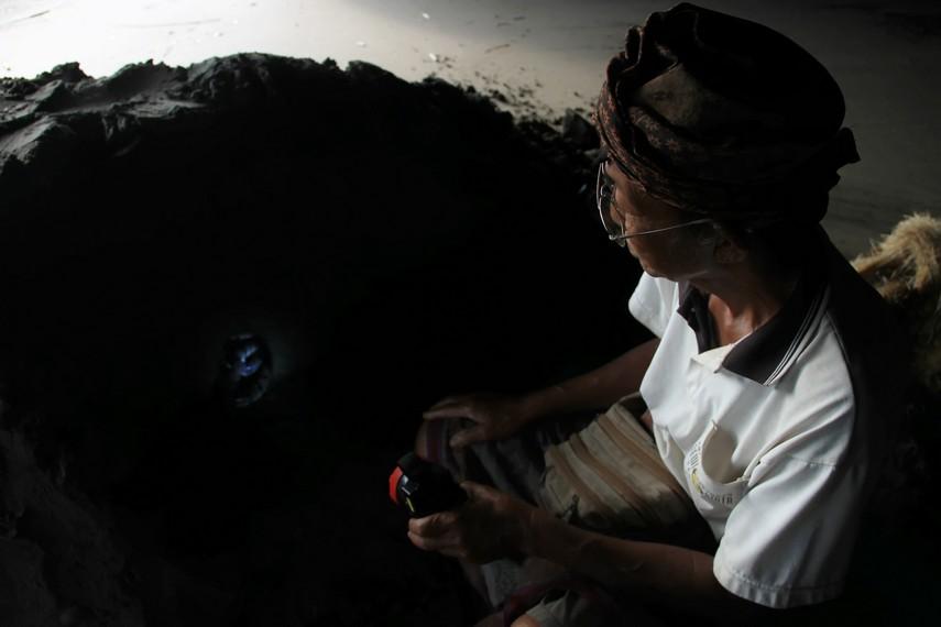 Ular di dalam gua di seberang Pura Tanah Lot dipercaya dapat memberikan peruntungan bagi pengunjung