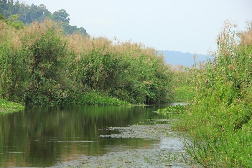 Cagar Alam Rawa Danau masuk dalam 3 kecamatan, yaitu Kecamatan Padarincang, Kecamatan Pabuaran dan Kecamatan Mancak