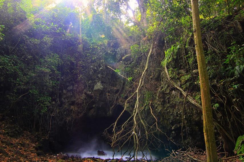 Perjalanan untuk sampai ke gua ini dimulai dengan berjalan kaki dari pesisir pantai hingga menaiki bukit