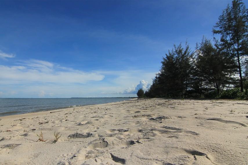 Pasirnya yang putih dan lembut menjadi salah satu daya tarik Pantai Nyiur Melambai