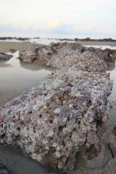 Saat air laut surut, pengunjung dapat melihat karang-karang yang indah di pinggir pantai