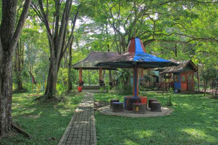 Salah satu fungsi Hutan Wisata Puntu Kayu yakni edukasi dengan mengadakan program penanaman pohon