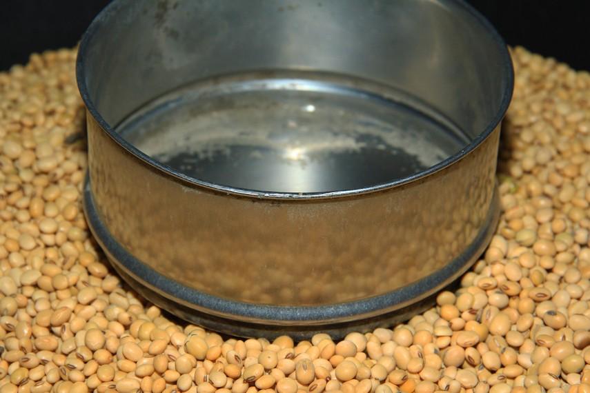 Kacang kedelai yang digunakan sebagai bahan dasar tahu, masih sangat kental di bagian dalam tahu khas Kuningan