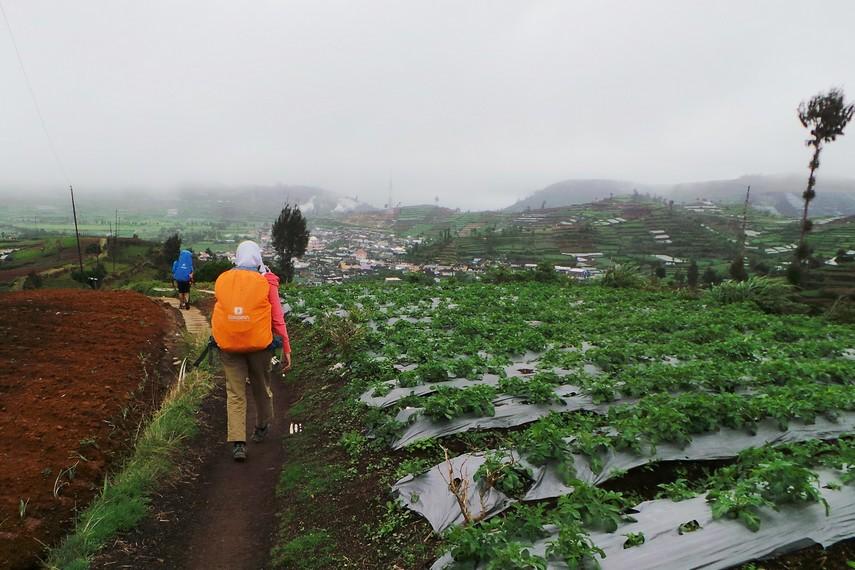 Gunung Prau tepat berada di perbatasan Kabupaten Kendal dengan Kabupaten Wonosobo, Jawa Tengah ini