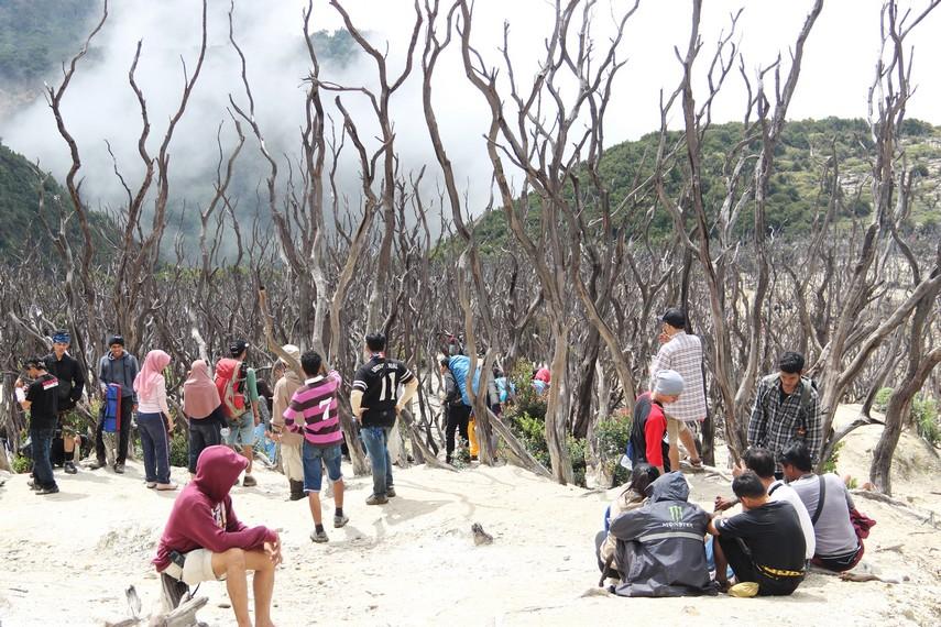Kawasan ini menjadi salah satu daya tarik bagi para pendaki untuk mengabadikan momen berada di sini dengan kamera