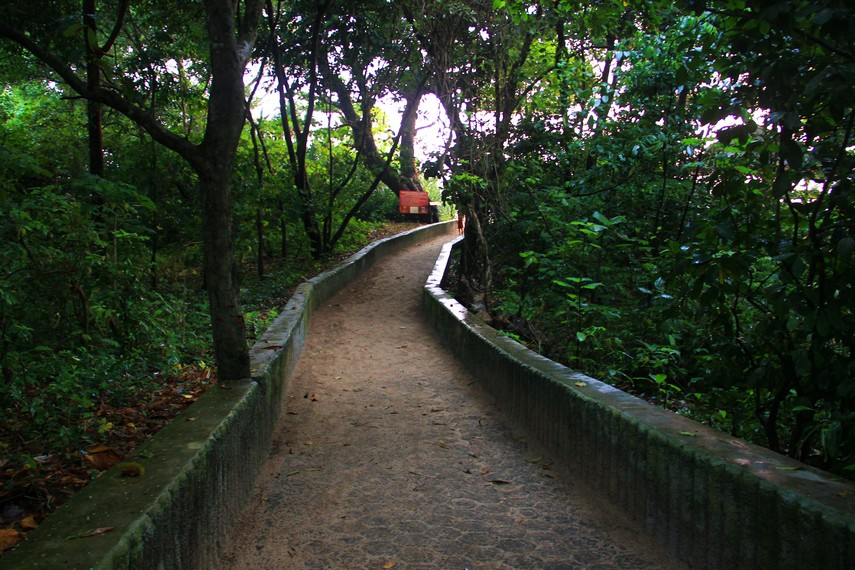 Jalan setapak yang harus dilalui menuju Pantai Pangumbahan