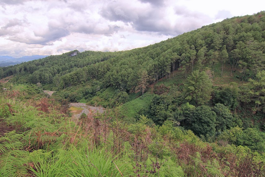 Selain menikmati panorama, Puncak Ampangan cocok untuk aktivitas rekreasi alam seperti trekking dan bersepeda gunung