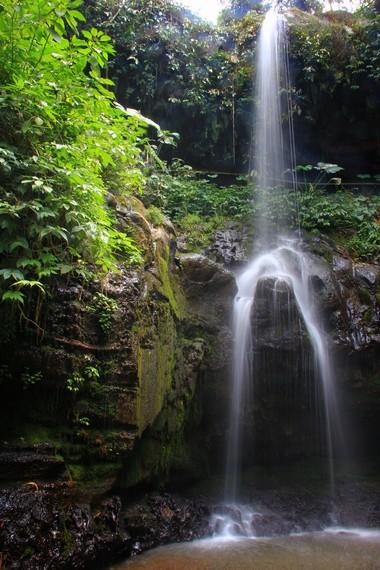 Curug Sumber Nyonya mempunyai tinggi pancur sekitar 15 meter
