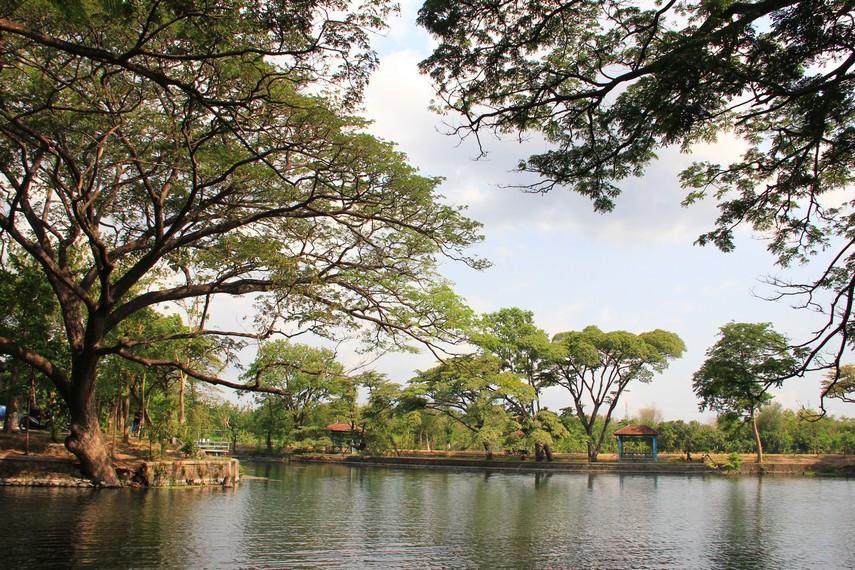 Keberadaan Ranu Ronggojalu juga berfungsi sebagai penampungan air di kala musim hujan