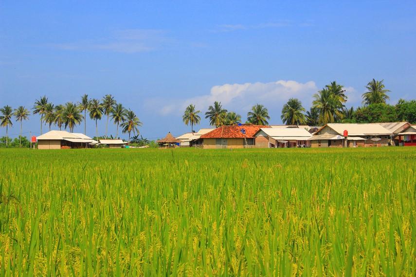 Destinasi wisata Desa Sawarna mulai dikenal sejak tahun 90-an, yaitu pada saat peselancar dari mancanegara mengarungi lautan demi mencari ombak yang sempurna