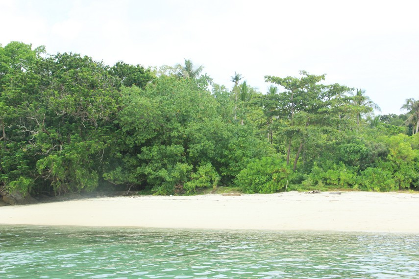 Mata pengunjung akan dimanjakan oleh hijaunya pepohonan saat berada di Pulau Pegadoran
