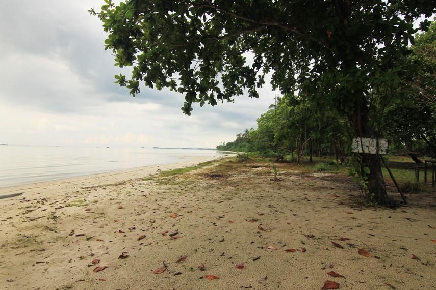 Nama Pantai Ketapang diberikan karena di sekitar lokasi pantai banyak tumbuh pohon ketapang
