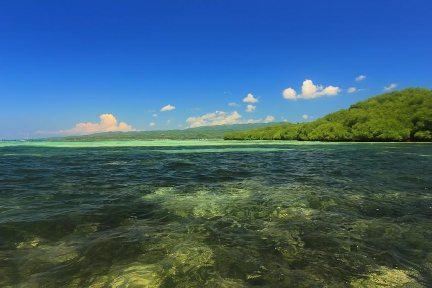 Perairan dangkal di sekitar hutan mangrove Jungut Batu menjadi salah satu tempat snorkeling terbaik di Nusa Lembongan