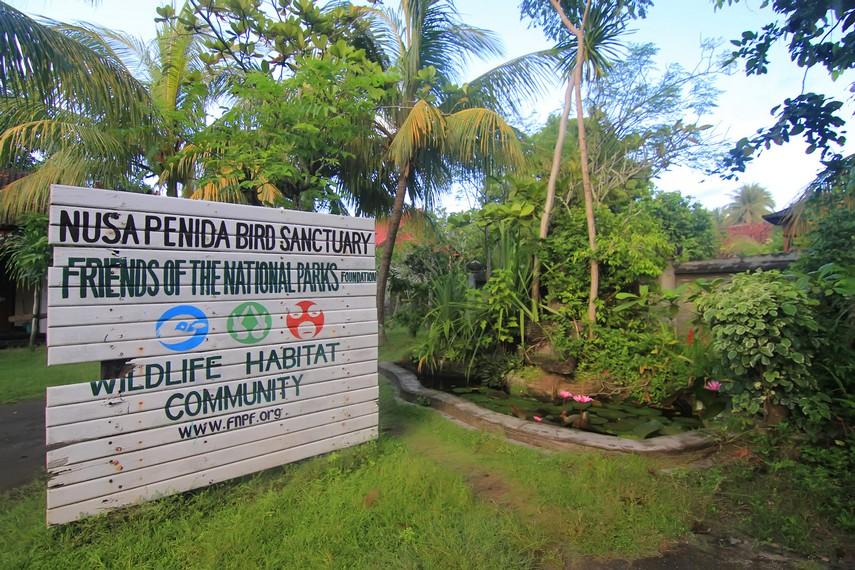 Program konservasi jalak Bali di Desa Ped, Nusa Penida, dijalankan oleh lembaga Friend of National Park Foundation