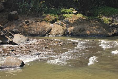 Selain menyajikan air terjun, kawasan ini juga menyajikan suasana penuh kesejukan khas kawasan hutan