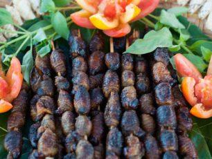 Kuliner Unik, Ulat Sagu dari Papua