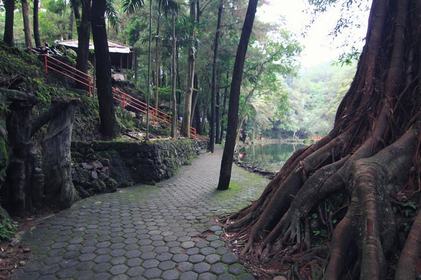 Jalur yang dibuat bagi pejalan kaki untuk memutari area sekitar Telaga Remis