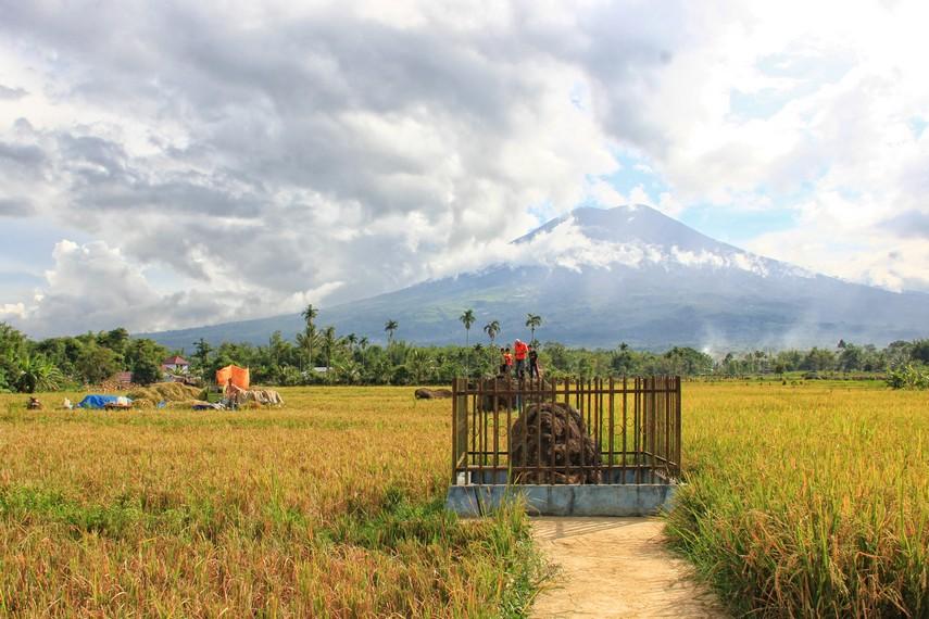 Situs di Desa Tanjung Ato ini terdapat di tengah-tengah sawah dengan pemandangan yang indah