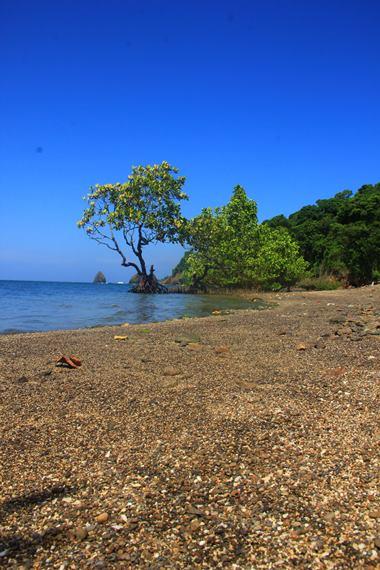 Pulau Tumbak tidak berpenghuni dan mempunyai luas kurang dari 1 hektar