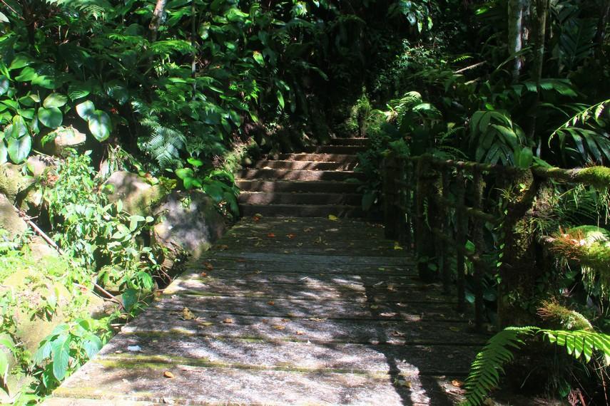 Jalan setapak yang dilalui pengunjung untuk mengunjungi 14 titik yang ada di Bukit Doa