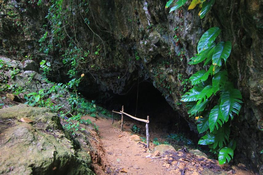 Berjalan menyusuri gua yang gelap bisa menjadi pengalaman yang tidak terlupakan