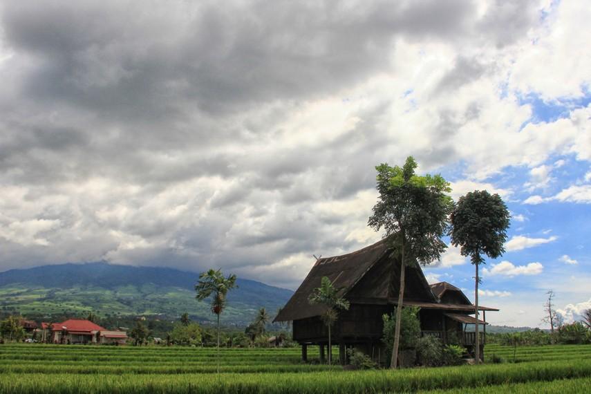 Keberadaan rumah baghi yang terletak di tengah sawah menjadi pemandangan menarik bagi wisatawan