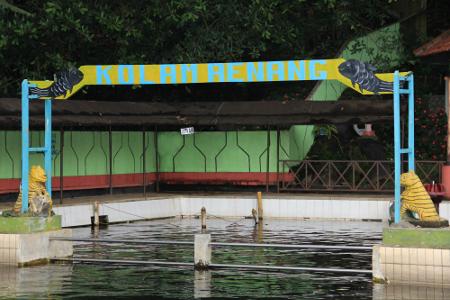 Konon mata air yang keluar dari kolam renang ini merupakan permintaan Sunan Gunung Jati kepada Allah SWT