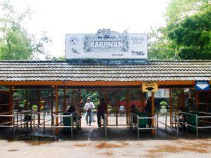 Jalan-jalan Menyenangkan dan Menambah Wawasan di Kebun Binatang Ragunan