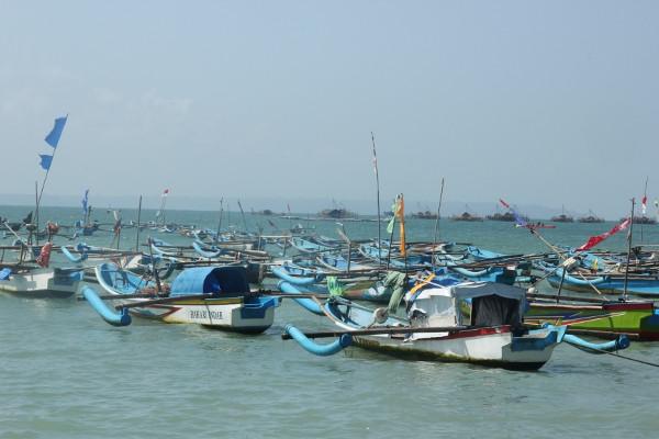 Perahu-perahu ini digunakan nelayan untuk melaut disaat malam dan hasilnya dijual di Tempat Pelelangan Ikan (TPI)