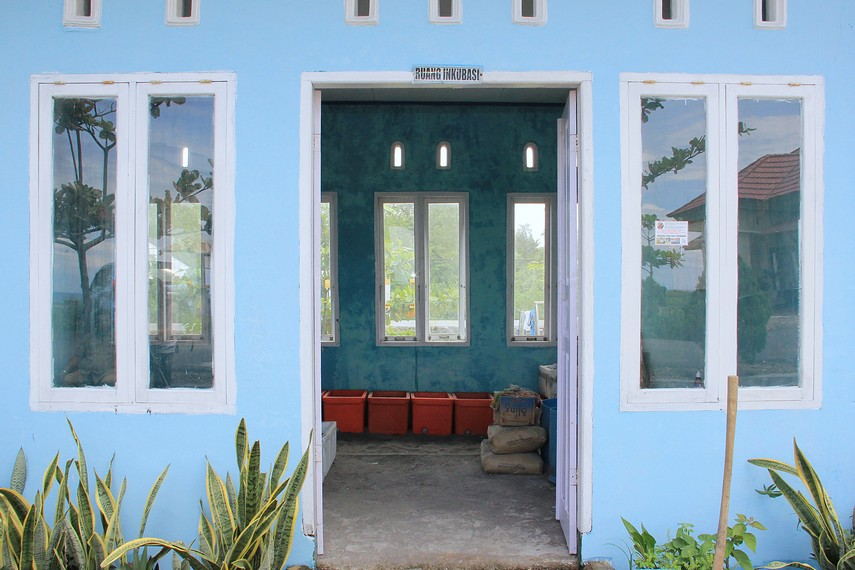 UPTD Pusat Konservasi Penyu Pariaman ini memiliki beberapa fasilitas yang dapat dikunjungi pengunjung seperti ruang inkubasi