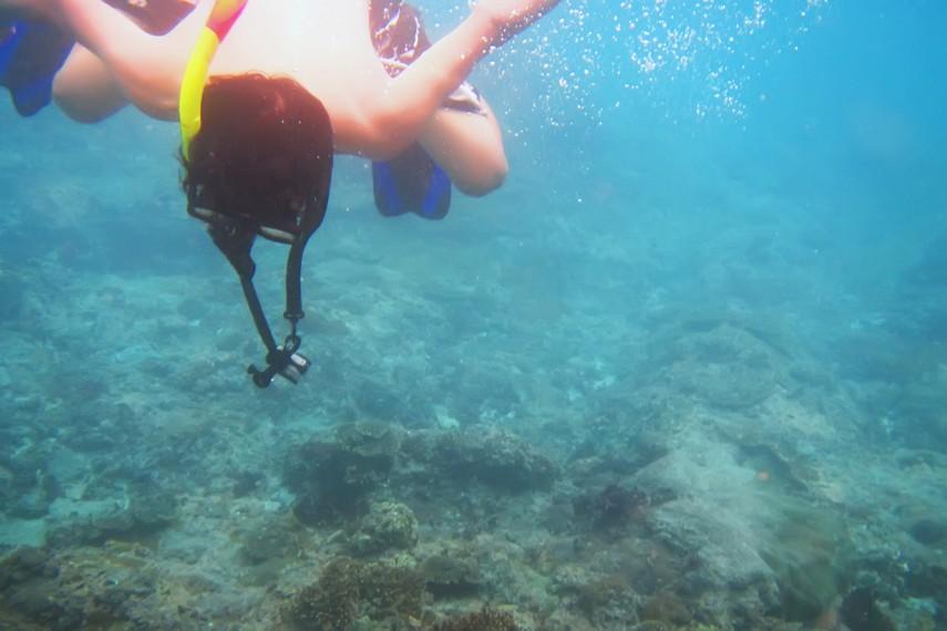 Bagi yang tidak memiliki lisensi menyelam tak perlu khawatir, karena bisa menikmati keindahan bawah laut dengan <i></noscript><img class=