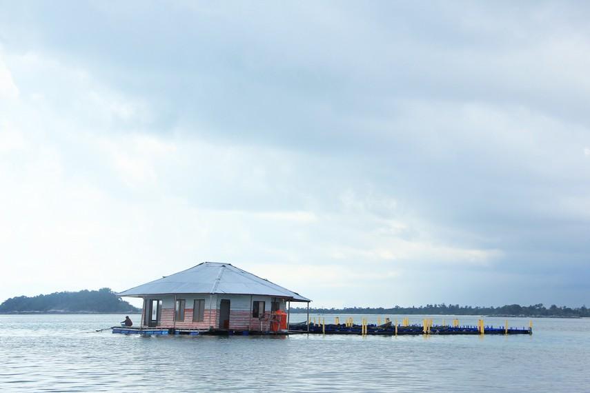 Melihat aktivitas nelayan di tambak ikan kerapu menjadi pilihan lain ketika berada di Pulau Burung