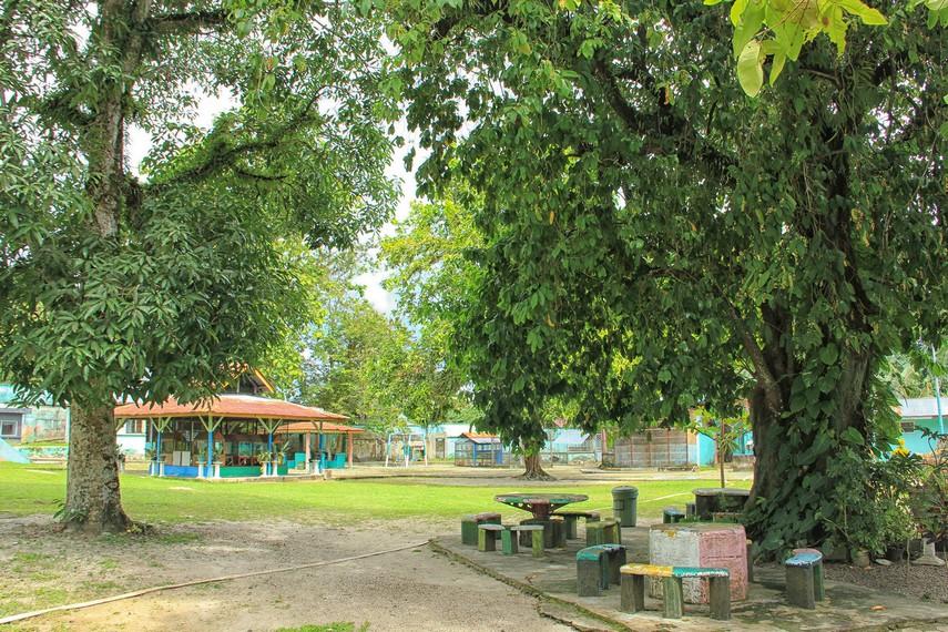 Taman-taman yang berada di Kebun Binatang Mini menjadikan suasana di sekitar tempat ini begitu asri