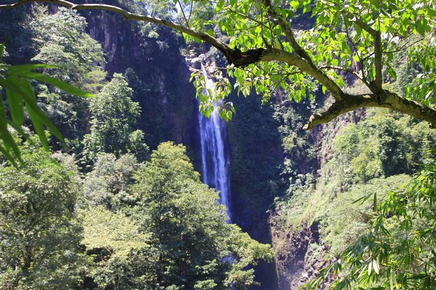 Air Terjun Bissapu dikelilingi pepohonan yang masih asri dan rindang