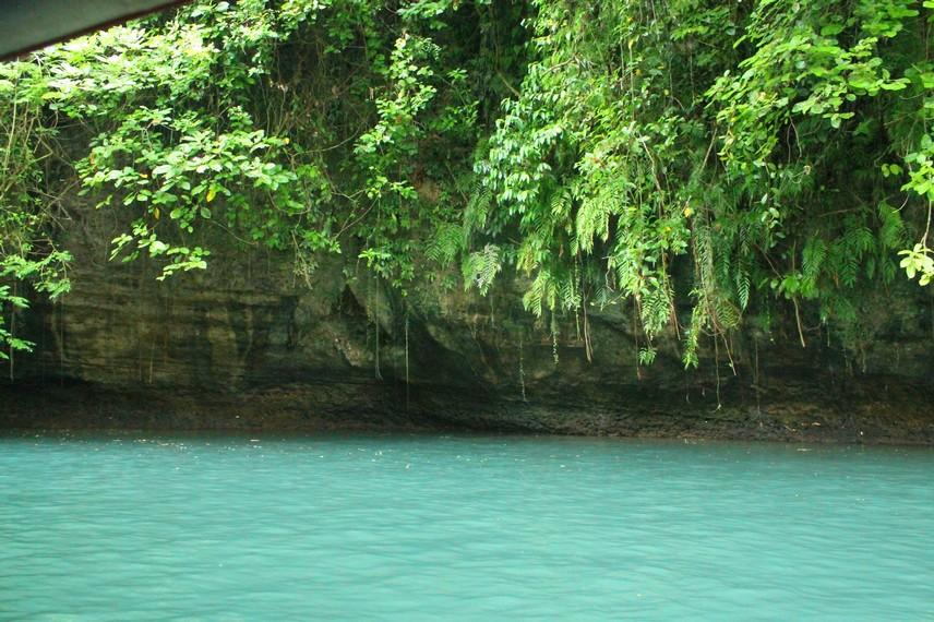 Air sungai Cijulang memendar kehijauan karena alga dan plankton disertai pantulan dari dinding batu berlumut di sepanjang sungai