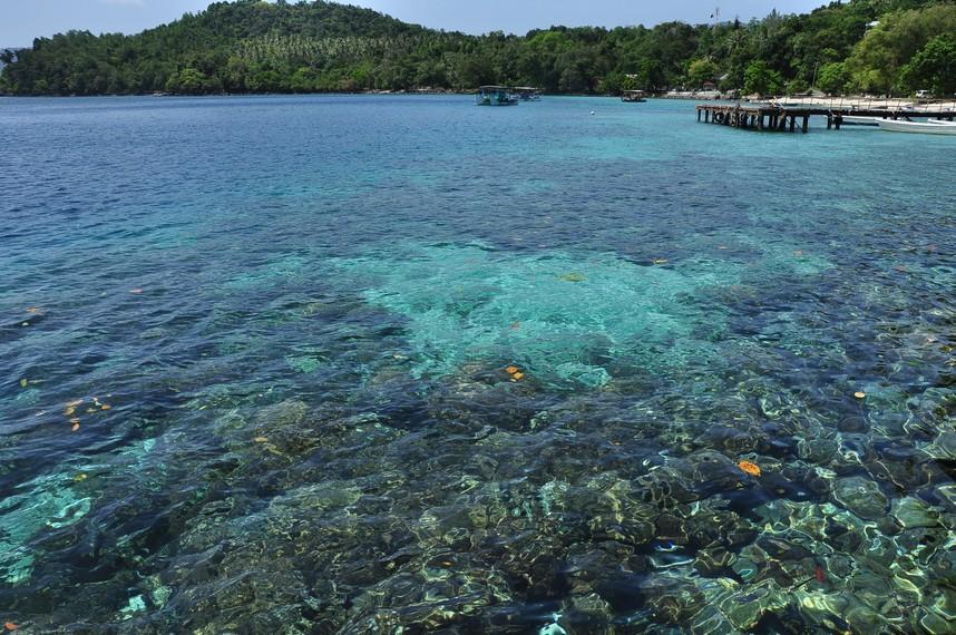Air yang jernih membuat keindahan terumbu karang dan terlihat dengan jelas